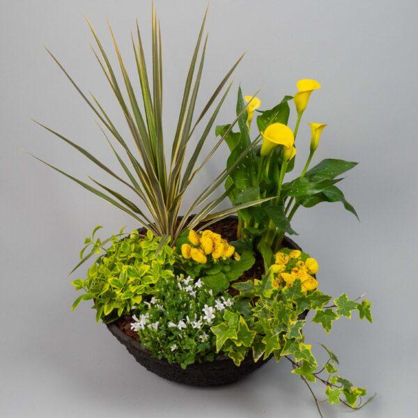 coupe-de-plantes-deuil-lavarenne-fleuriste-lyon