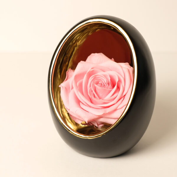 oeuf-rose-rose-stabilisee
