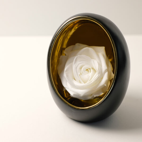 oeuf-rose-blanche-stabilisee
