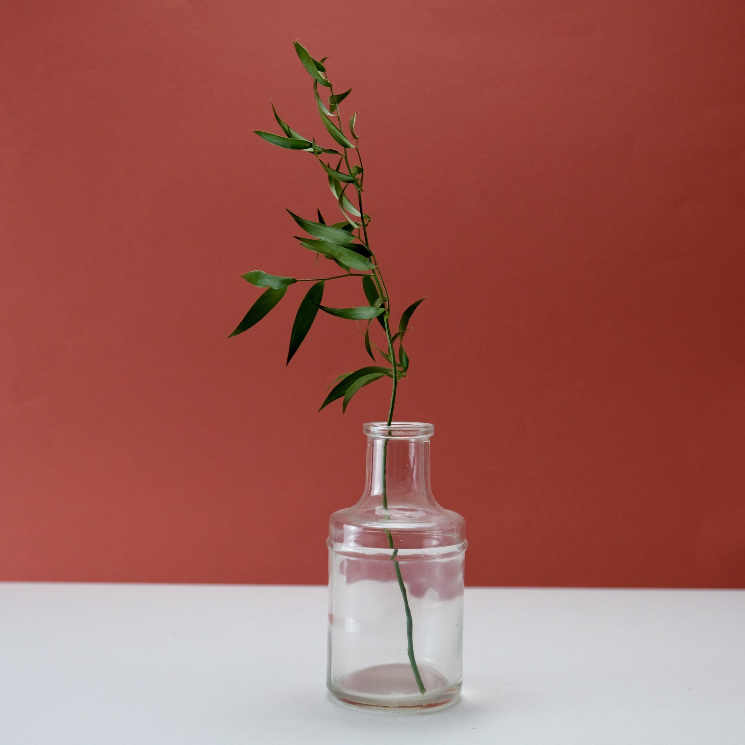 fiole8-atelier-lavarenne-fleuriste-lyon